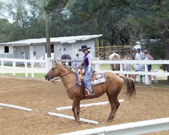 30/42: Sand and Spur Stables - Eglin AFB
