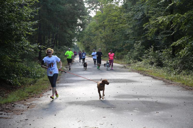 1/16: People running with dogs